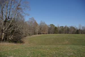 Camp Creek Farmland and Hunting Tract - Lancaster County SC