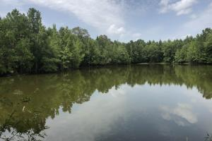 Recreational Tract with Stocked Lake - Holmes County MS