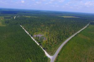 Columbus County Hunting Land - Columbus County NC