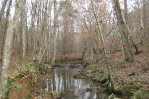 Liberty Hill Hunting and Timber Investment - McCormick County SC