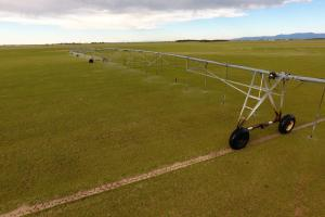 Big Valley Sod Farms & Ground Water Rights For Sale in El Paso, CO (10 of 14)