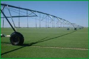 Big Valley Sod Farms & Ground Water Rights For Sale - El Paso County CO