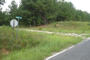Maybinton Timber Investment and Hunting Property - Newberry County SC