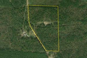 Taylor Springs Road Homesite/Hunting Tract - Lamar County AL