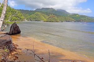 Caribbean Beachfront Property - Saint Andrew Dominica