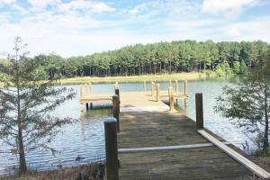 Sneads Creek Recreational Tract in Pickens, AL (22 of 62)
