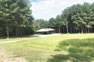 Sneads Creek Recreational Tract in Pickens, AL (61 of 62)