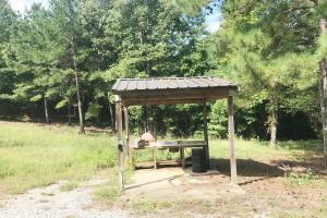 Sneads Creek Recreational Tract in Pickens, AL (19 of 62)