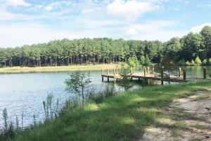 Sneads Creek Recreational Tract in Pickens, AL (25 of 62)