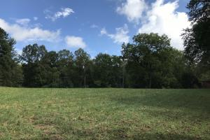 Unrestricted Fletcher Acreage for Development or Estate - Henderson County NC