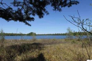 #2, Hunting, Recreational, Woods, Katherine Lake, xxx Cloquet Lake Rd, Finland - Lake County MN