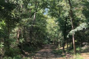 Florence Byram Rd 9.52 Acre Property - Rankin County MS