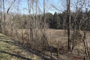 Bottomland, good crop soils, cropland,  south side of road (7 of 21)