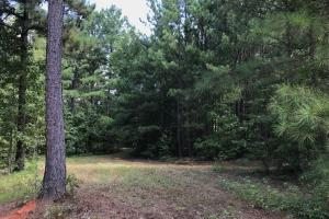 Highway 11 Hardwood Hunting Land in Jasper, GA (42 of 46)