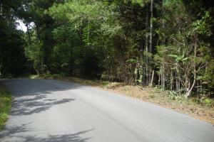 82+ Acre Recreational/Residential/Hunting Land off Hwy 27 in Floyd, GA (14 of 14)