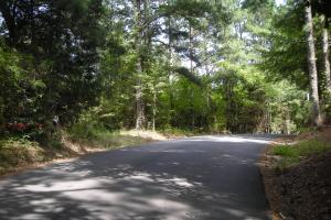 82+ Acre Recreational/Residential/Hunting Land off Hwy 27 in Floyd, GA (2 of 14)