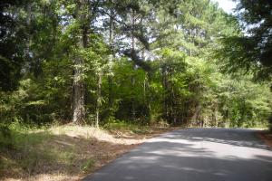 82+ Acre Recreational/Residential/Hunting Land off Hwy 27 in Floyd, GA (12 of 14)