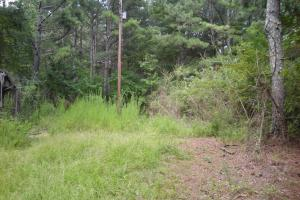 82+ Acre Recreational/Residential/Hunting Land off Hwy 27 in Floyd, GA (5 of 14)