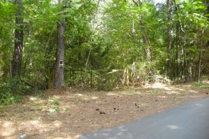 82+ Acre Recreational/Residential/Hunting Land off Hwy 27 in Floyd, GA (6 of 14)