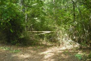 82+ Acre Recreational/Residential/Hunting Land off Hwy 27 in Floyd, GA (4 of 14)