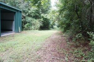 Colwell Creek Hunting & Timber Tract in Hale, AL (11 of 18)