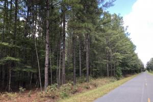 Wooded Recreational Homesite Firetower Rd (Parcel 2) - Jasper County SC