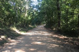 Yellowleaf Creek Homesites & Timber in Shelby, AL (10 of 39)