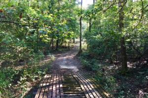 Historic Longshadow Farm Hunting Recreation Tract in Schley, GA (23 of 34)