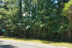 Hudson Mill Community Lot/Acreage - Coffee County AL