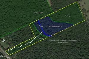Large Wooded Home-site / Recreational in Walker County, TX (8 of 8)