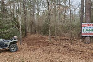 Large Wooded Home-site / Recreational - Walker County, TX