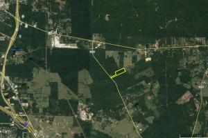 Large Wooded Home-site / Recreational in Walker County, TX (3 of 8)