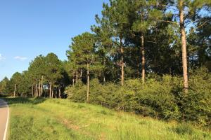Rocky Branch Road Residential Property - Lamar County MS