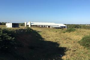 ( 100x300 cattle shed, 60x80 w/30x80 shed, 25x100 commodity shed on left over looking dirt floor trench silo (West place) (20 of 44)