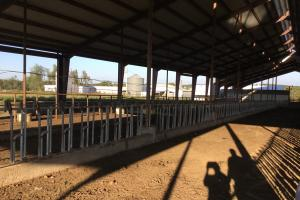 all concrete recently use for growing calves and finishing cattle(West place) (22 of 44)