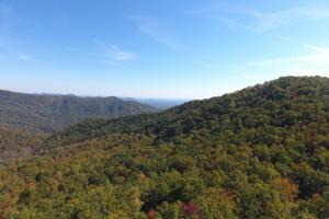 Private Wilderness With Long Range Views in Buncombe, NC (12 of 19)