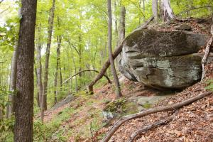 Boulders on Souther Portion (7 of 19)