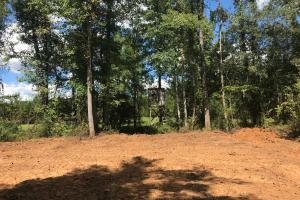 Hughes Creek Hunting & Timber Investment in Pickens, AL (27 of 54)
