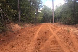 Hughes Creek Hunting & Timber Investment in Pickens, AL (36 of 54)