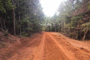 Hughes Creek Hunting & Timber Investment in Pickens, AL (34 of 54)