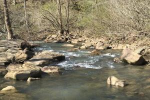 250+/- Acres on South Fork Little Red River in Van Buren, AR (15 of 18)