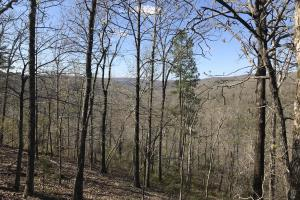 250+/- Acres on South Fork Little Red River in Van Buren, AR (7 of 18)