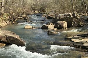 250+/- Acres on South Fork Little Red River in Van Buren, AR (3 of 18)