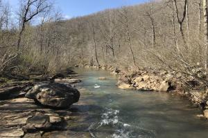 250+/- Acres on South Fork Little Red River in Van Buren, AR (18 of 18)
