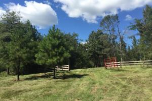 Durant Recreational & Timber Tract - Holmes County MS