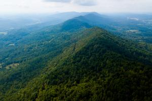 Joppa Mountain Tennessee Acreage Property in Grainger, TN (11 of 43)