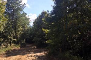 Lexington Get-Away & Hunting Tract in Holmes, MS (3 of 12)