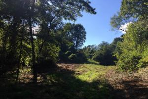 Lexington Get-Away & Hunting Tract in Holmes, MS (10 of 12)
