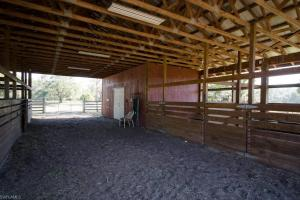 Crazy T Ranch Equestrian Paradise  in Lee, FL (19 of 37)