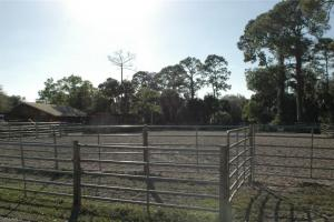 Crazy T Ranch Equestrian Paradise  in Lee, FL (16 of 37)